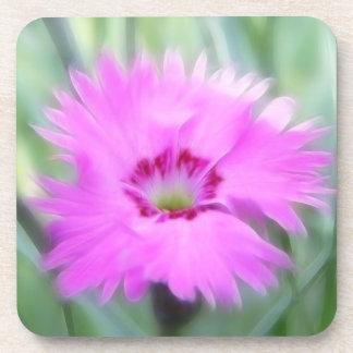 Cottage Pinks - Dianthus Drink Coaster