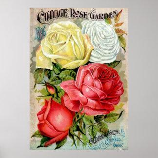 Cottage Rose Garden Advertisemen Poster
