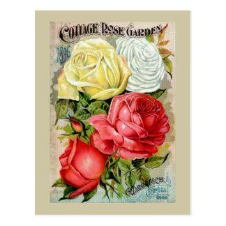 Cottage Rose Garden Advertisement Postcards