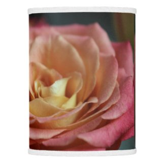 Cottage Tea Rose Lamp Shade