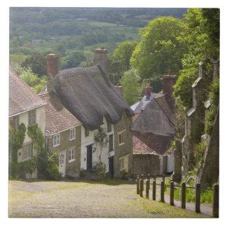 Cottages at Gold Hill, Shaftesbury, Dorset, Ceramic Tile