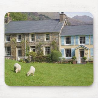 Cottages, Beddgelert, Gwynedd, Wales Mouse Pad