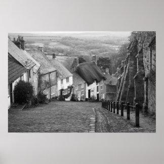Cottages on a golden hill Shaftesbury Dorset En Poster