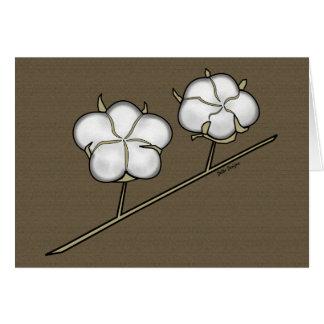 Cotton Boll Card