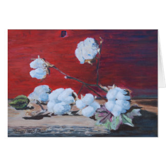 Cotton Boll Still Life Card
