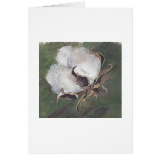 cotton boll with green background cards