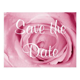 Cotton Candy Pink Save the Date Postcard