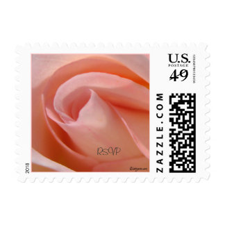 Cotton Candy Rose Bud Small Postage Stamps