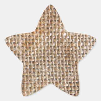 Cotton Canvas Star Sticker