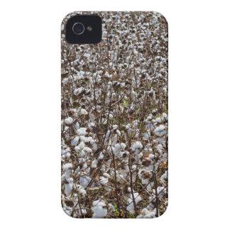 Cotton Crops Field iPhone 4 Case