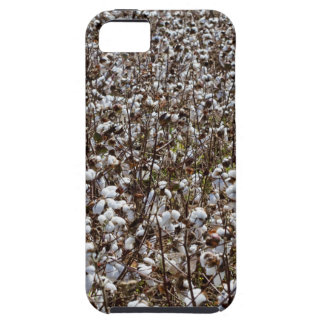 Cotton Crops Field iPhone SE/5/5s Case