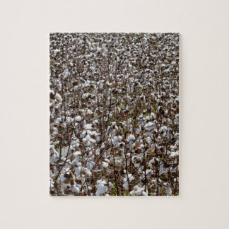 Cotton Crops Field Jigsaw Puzzle