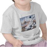 Cotton Field Infant light short sleeve T-Shirt