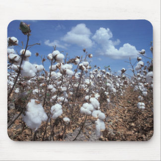 Cotton Field Mouse Pad
