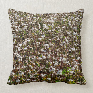 Cotton Field Pillow