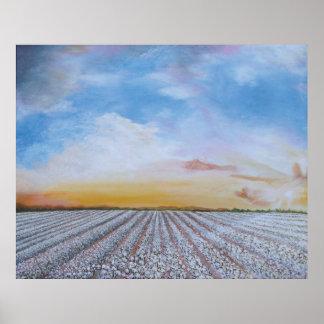 Cotton Field Sunset Poster