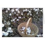 Cotton Pickin' Basket Cards