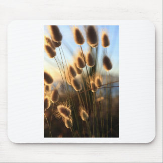 Cotton tail summer coast wild grasses mouse pad