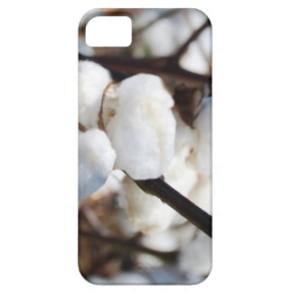 Cotton  the flower for 2nd anniversary iPhone SE/5/5s case