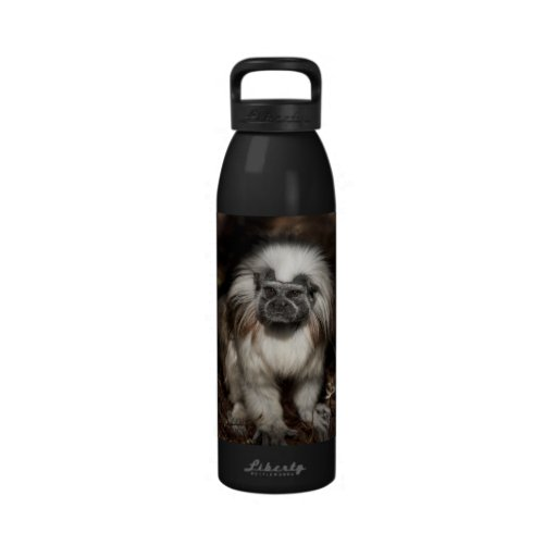 Cotton-top Tamarin Reusable 24 oz Bottle Water Bottle
