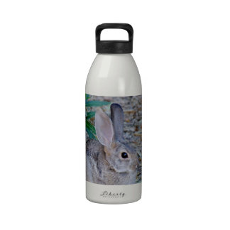 Cottontail -1 drinking bottles