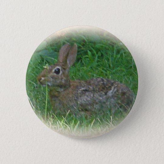 Cottontail Bunny Rabbit Cordinating Items Pinback Button