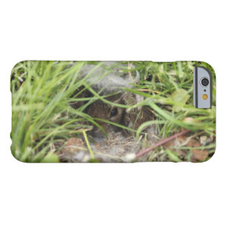 Cottontail Rabbit Babies Barely There iPhone 6 Case