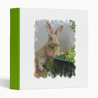Cottontail Rabbit Binder