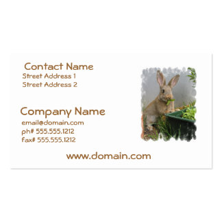 Cottontail Rabbit Business Cards