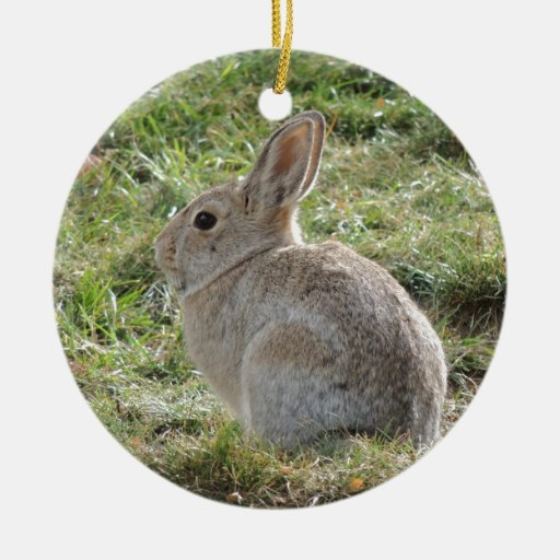 Cottontail Rabbit Christmas Ornaments