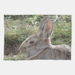 Cottontail Rabbit Hand Towel