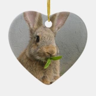 Cottontail Rabbit Ornament