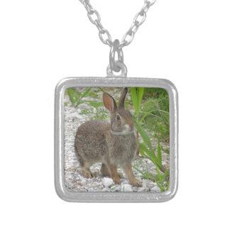 Cottontail Rabbit Square Pendant Necklace