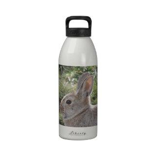 Cottontail Rabbit Drinking Bottles