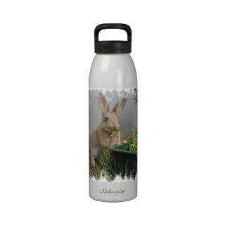 Cottontail Rabbit Water Bottle