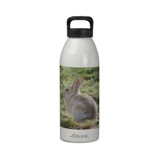Cottontail Rabbit Reusable Water Bottle