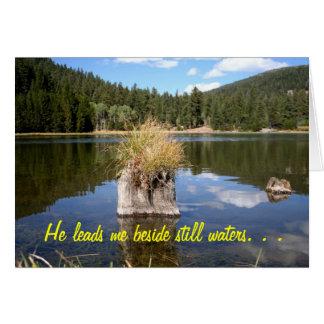Cottonwood Meadow Lake Greeting Cards