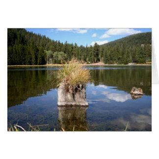 Cottonwood Meadow Lake Greeting Card