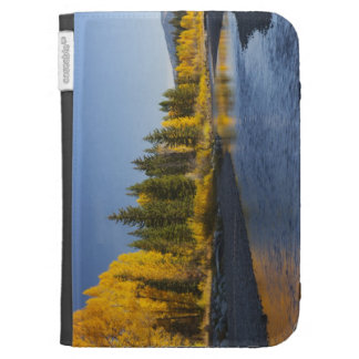 Cottonwood trees reflected in Pacific Creek Kindle Folio Cases
