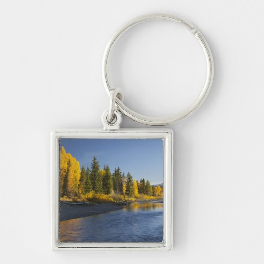 Cottonwood trees reflected in Pacific Creek Keychain