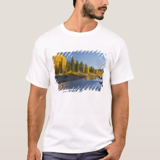Cottonwood trees reflected in Pacific Creek T-Shirt