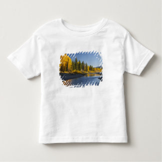 Cottonwood trees reflected in Pacific Creek Toddler T-shirt