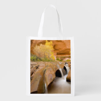 Cottonwoods in Autumn, Coyote Gulch, Glen Grocery Bag