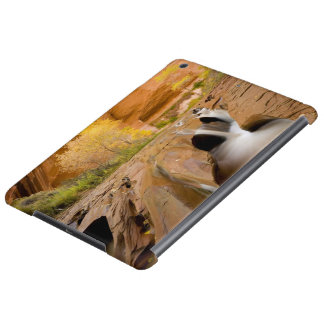 Cottonwoods in Autumn, Coyote Gulch, Glen iPad Air Case