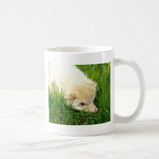 Cotty in grass mug