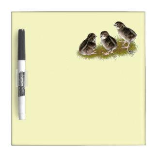 Coturnix Quail Chicks Dry-Erase Whiteboard