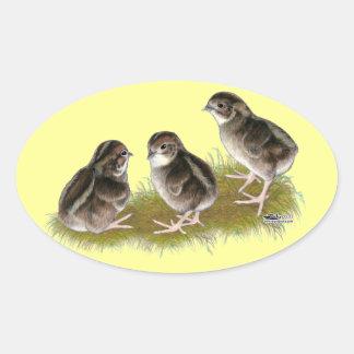 Coturnix Quail Chicks Oval Sticker