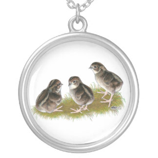 Coturnix Quail Chicks Silver Plated Necklace
