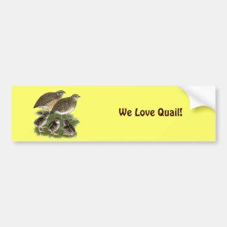 Coturnix Quail Family Bumper Sticker