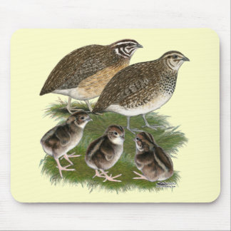 Coturnix Quail Family Mouse Pad